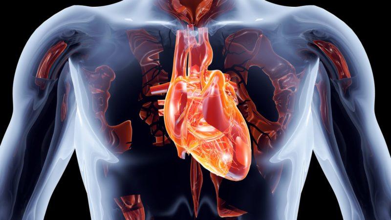 Поражения сердца при подагре
